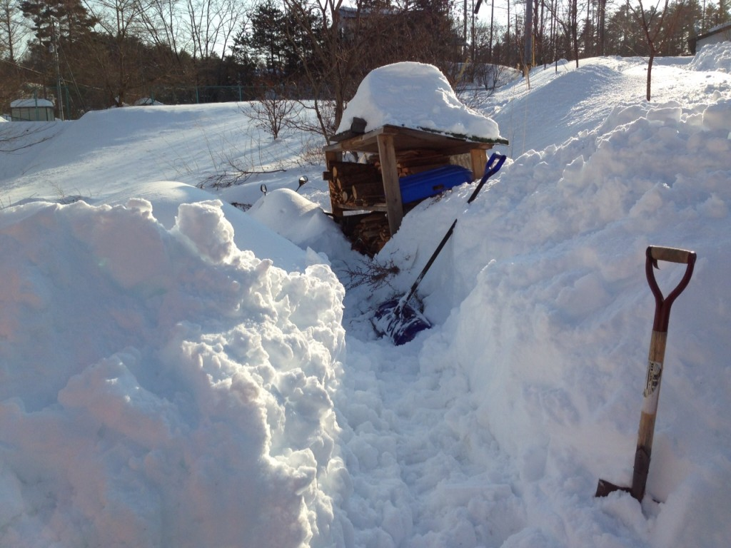 snow20140218